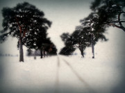 Christmas Card Digital Art Metal Prints - Evergreen Road Metal Print by Julie Hamilton