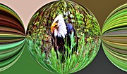 Eagles Digital Art - Evil Eagle by Don Mann