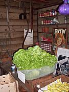 Lettuce Photo Originals - Evinston Fl Wood and Swink Old Store by Warren Thompson