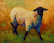 Cute Painting Framed Prints - Ewe Portrait IV Framed Print by Marion Rose