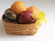 Flower Basket Photos - Expired Fruit by Valerie Morrison