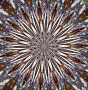Radiating Digital Art - Exploding Feathers by Carolyn Marshall