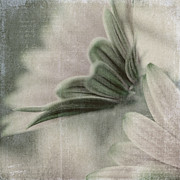 Textured Floral Framed Prints - Expression Framed Print by Bonnie Bruno