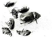 Exterminator Print by Joe Jake Pratt