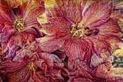 Purple Floral Prints - Extreme Print by Kristin Kreet