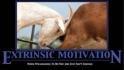 Humour Prints - Extrinsic Motivation De-Motivational Poster Print by Lisa Knechtel