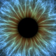 Science Photo Library Art - Eye, Iris by Pasieka