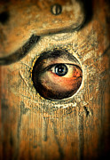 Hiding Metal Prints - Eye Looking Through Peep Hole Metal Print by Jill Battaglia