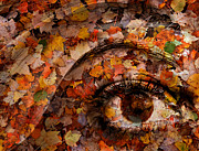 Composite Posters - Eye of Autumn Poster by Joe Bonita