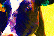 Wings Domain Art - Eye of Cow 783 . Photoart by Wingsdomain Art and Photography