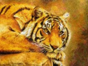 Zeana Romanovna Mixed Media Prints - Eye Of The Tiger Print by Zeana Romanovna