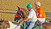 Trotting Photos - Eye on the Athlete  by Betsy A Cutler East Coast Barrier Islands