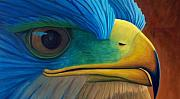 Raptor Paintings - Eye on the Prize by Brian  Commerford