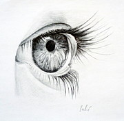 Graphite Drawings Prints - Eye study Print by Eleonora Perlic