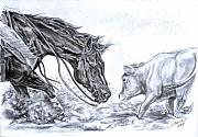 Horses Drawings Prints - Eye to eye Print by Jana Goode