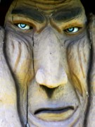 Troll Posters - Eyes Of A Troll Poster by Lori Seaman
