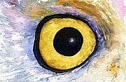 John Benson Paintings - Eyes of Owls No.1 by John D Benson