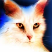 White Cat Art Mixed Media - Eyes by Shevon Johnson