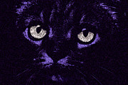 Cat Face Prints - Eyes Straight To the Heart Print by Andee Photography