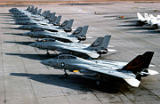 Jets Framed Prints - F-14a Tomcats On The Flight Line At Nas Framed Print by Dave Baranek