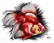 Koi Fish Drawings - F ck Nemo by Pete Tapang