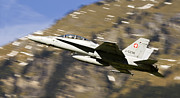 Axalp Prints - F18 Hornet Print by Angel  Tarantella