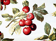 White Cloth Framed Prints - Fabric Print of Cherries Framed Print by Linda Phelps