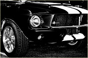 Shelby 350 Posters - Face of a Cobra BW Poster by DigiArt Diaries by Vicky Browning
