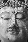 Contemplate Art - Face of Buddha statue by Maratsavalai Lertsirivilai