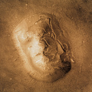 Planet Mars Prints - Face On Mars Print by Nasa