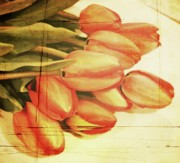 Tulips - Faded Tulips by Cathie Tyler
