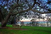 Sunset Digital Art Originals - Fairhope Swing on the Bay by Michael Thomas