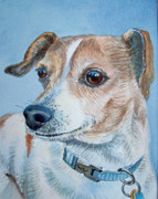 Portraits Of Pets Art - Faithful Eyes by Irina Sztukowski