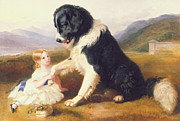 Puppies Painting Prints - Faithful Friends Print by English School