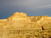 Feva  Fotos - Fajada Butte at Sunset with Elk