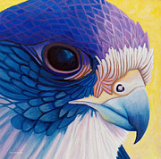 Raptor Paintings - Falcon Medicine by Brian  Commerford