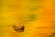 Rock Photos - Fall Abstract by Adam Romanowicz