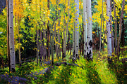 Vibrant Color Prints Paintings - Fall Aspen Forest by Gary Kim