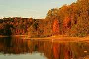 Southern Indiana Photo Metal Prints - Fall at Patoka Metal Print by Brandi Allbright