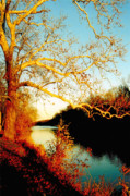 Surreal Landscape Photo Originals - Fall at the Raritan River in New Jersey by Christine Till