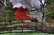 Virginia Farm Prints - Fall Begins Print by Todd Hostetter