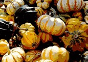 Acorn Squash Posters - Fall Bounty Poster by Carol Groenen