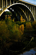 San Rafael Bridge Prints - Fall bridge arch Print by Christy Borgman