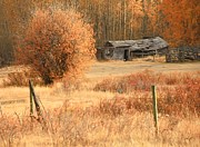 Fall Scenes Photo Originals - Fall Cabin by Roland Stanke