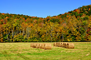 Hay Bales Framed Prints - Fall Color Randolph County West Virginia Framed Print by Thomas R Fletcher