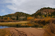 Fall Colors Photos - Fall Colors Colorado by Ernie Echols