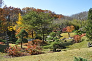 Cheekwood Art - Fall Colors by Denise Ellis