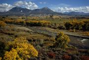 Autumn Views Prints - Fall Colors Near Durango, Colorado Print by Lynn Johnson