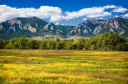 Marilyn Hunt - Fall Colors of Boulder Colorado