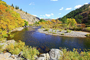 The Hills Originals - Fall Colors On The Poudre by James Steele